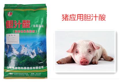 猪应用胆汁酸