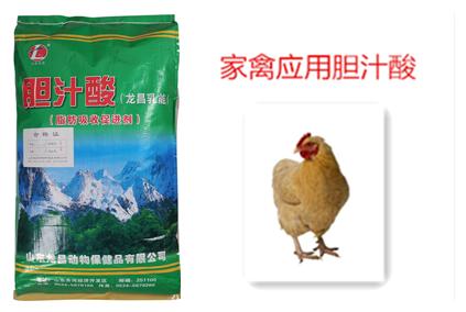 家禽应用胆汁酸